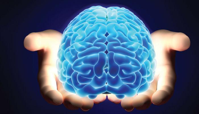 Complexities brain